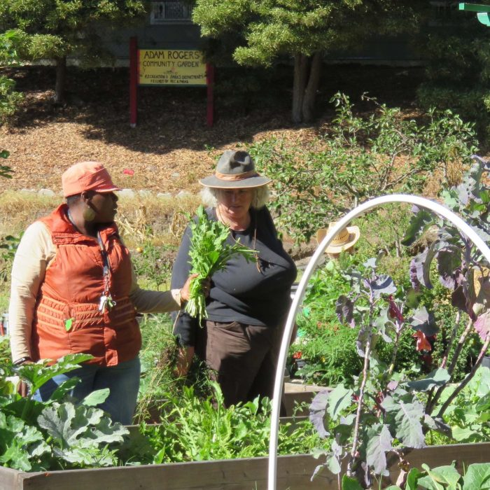 Hunter's Point Gardening with Starhawk