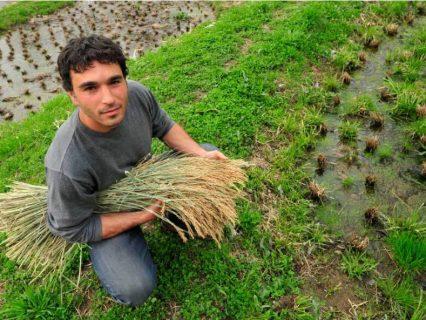 ferme-permaculture-autonomie-Ben-Falk-formation-permaculture-design_03